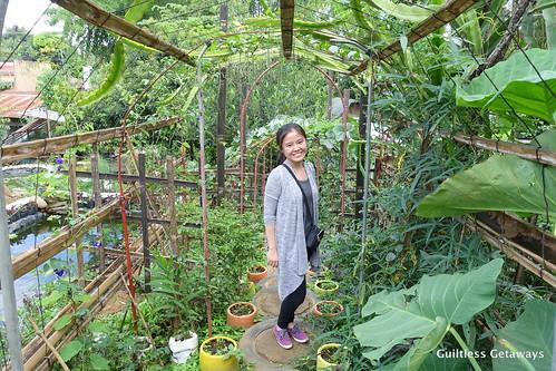 jaya-secret-garden.jpg