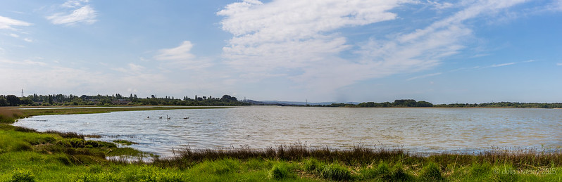 Panorama of Lychett Bay
