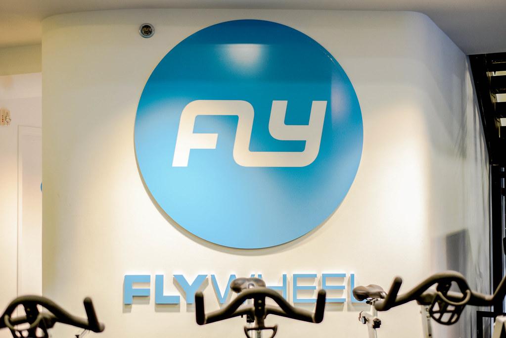 Fly_13