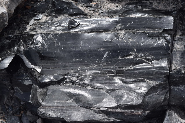 Obsidian Lava Bed, Newberry National Monument, Oregon