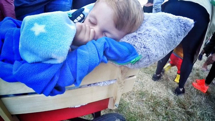 Camp Bestival Snoozes