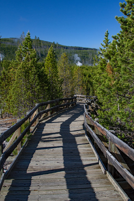 Norris Geyser Basin Path