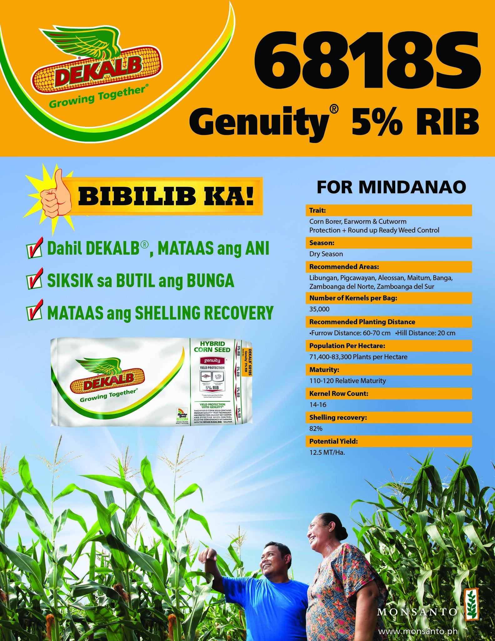 DEKALB 6818S for Mindanao