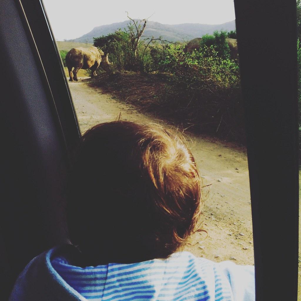 Instagramming Northern KZN