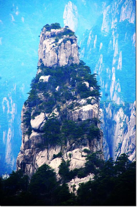 黃山的奇松怪石 3